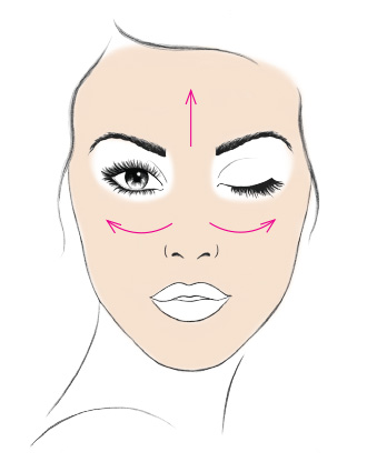FACE (Powder Brush)